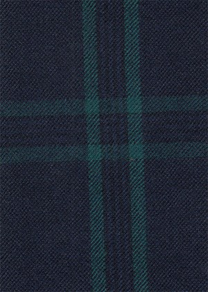 Navy with green check