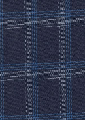 Navy with white / light blue check