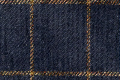 Navy with Gold check